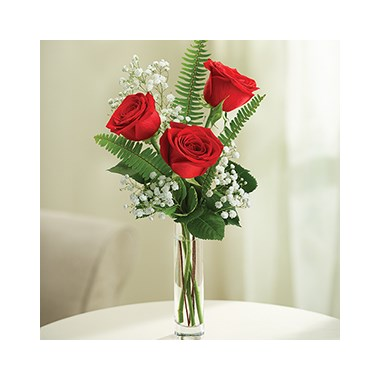 3-roses-in-vase-with-baby-s-breath