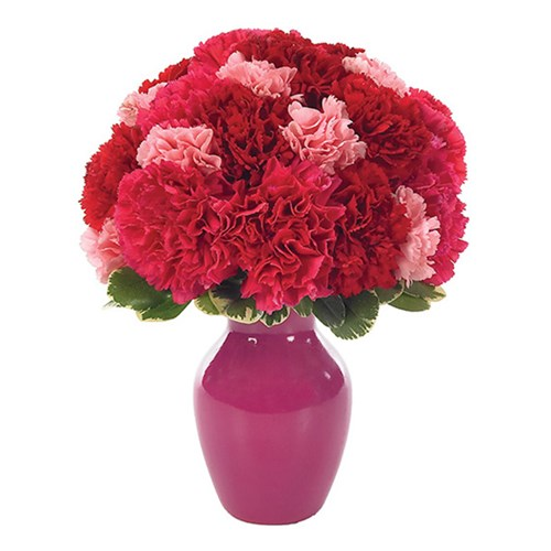 Contemporary carnations bud vase flower bouquet for sale